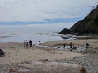 2012年07月29日 Indian Beach 076