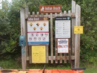 2012年07月29日 Indian Beach 077