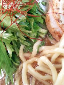 ソラトブ ドンブリ in 愛知-麺と水菜