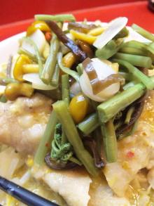 ソラトブ ドンブリ in 愛知-山菜