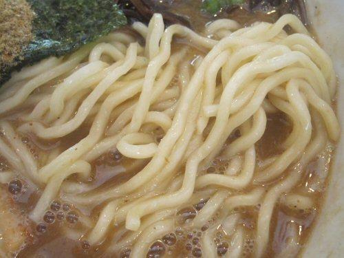 ソラトブ ドンブリ in 愛知-中太麺
