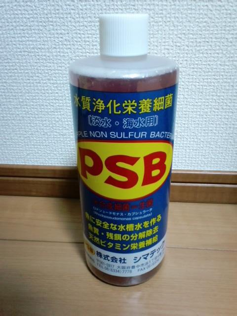 PAP_0001_20130119011326.jpg
