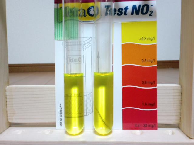 水質テスト3