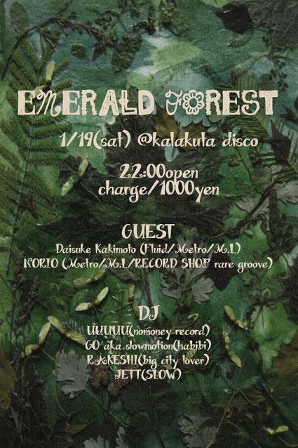 20130119emerald-forest.jpg