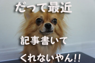 DSC08121_20121205151959.jpg