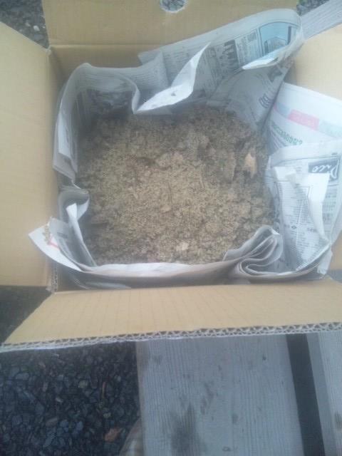 米ぬか発酵 混ぜたところ