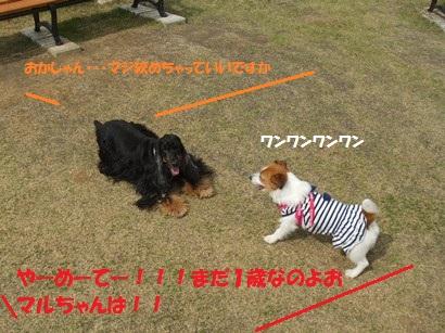 DSCF5101.jpg