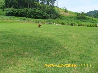 DSCF5490.jpg