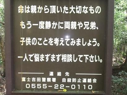 DSCF5928.jpg