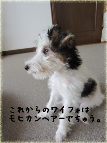 1_20121002140222.jpg