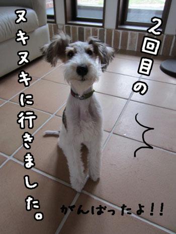 1_20121121183801.jpg