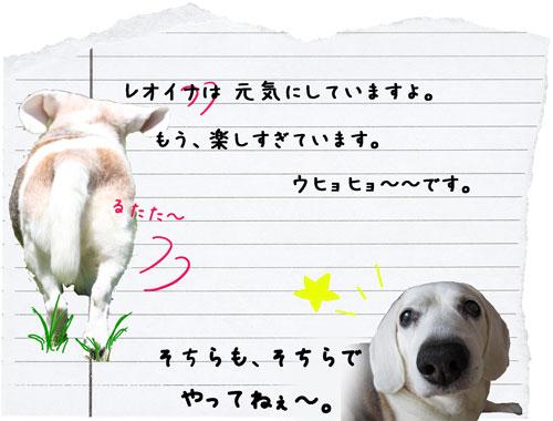 24_20120723165848.jpg