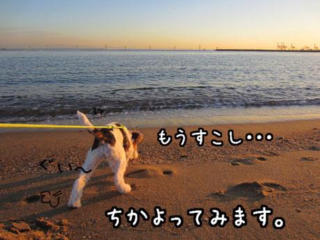 2_20121116231150.jpg