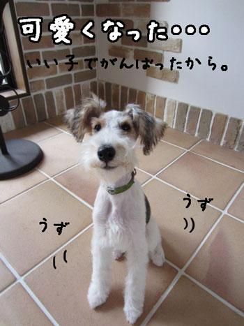 2_20121121183841.jpg