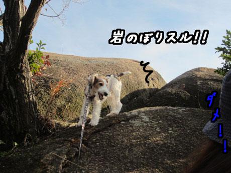 2_20121229174803.jpg