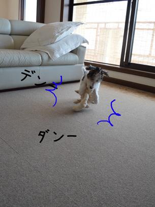 3_20120927120259.jpg