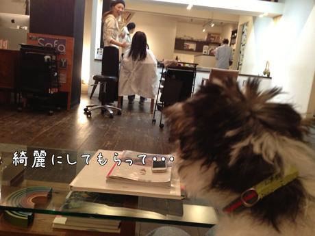3_20121013155512.jpg