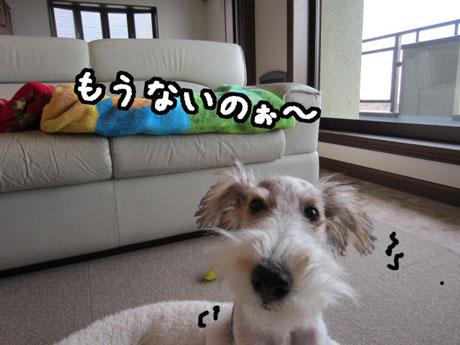3_20121124170558.jpg
