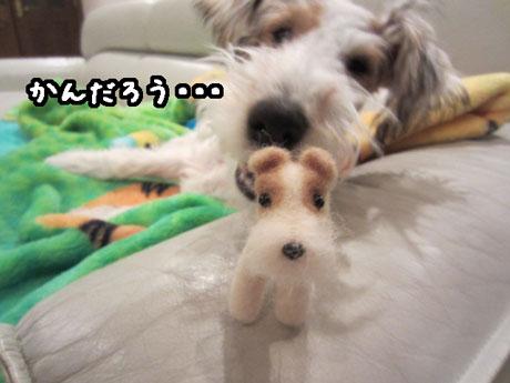 3_20121220201141.jpg