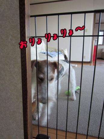 3_201310111446436ce.jpg