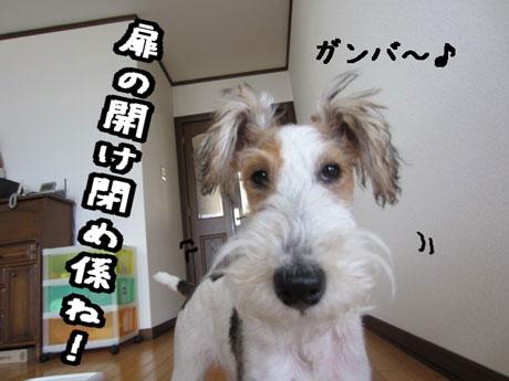 3a_20121222172324.jpg