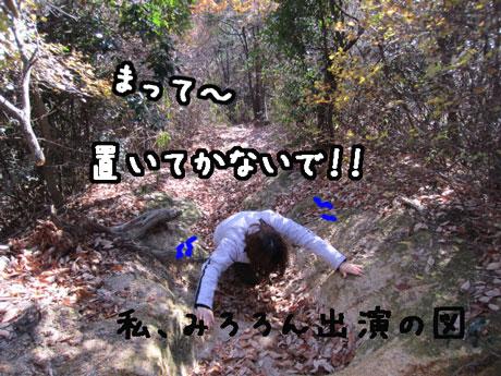 5_20121206152711.jpg