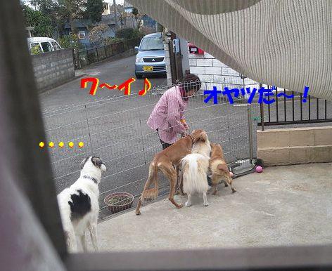 b_20140109075559ad0.jpg