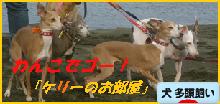 itabana3_2014010410520374d.png