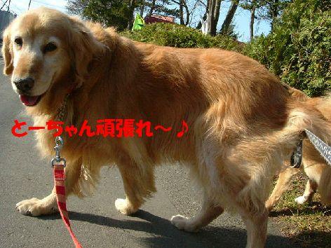 n_20140122215937454.jpg