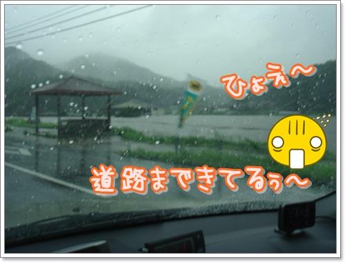 DSC07986.jpg