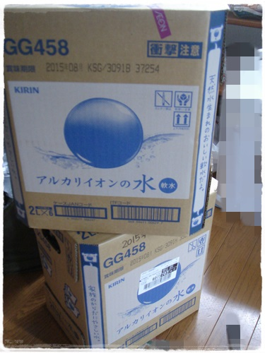 DSC08560.jpg