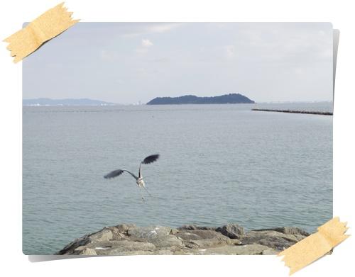 砂浜IMGP1836-20141130