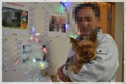 クリスマスDSC_0887-20141202