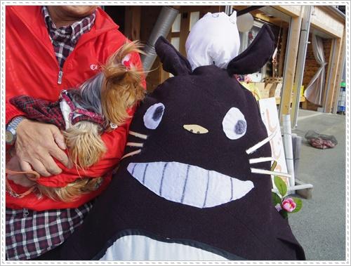 しじみIMGP1854-20141206