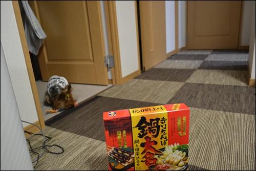 お鍋DSC_0978-20141218
