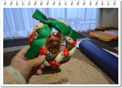 もうすぐクリスマスDSC_0985-20141220