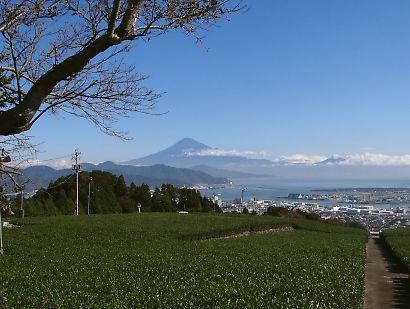 静岡市四季の富士-4