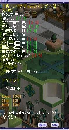 11.1シエナ6