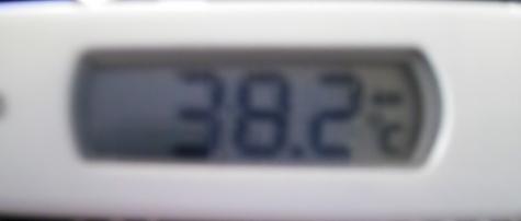 12.6体温