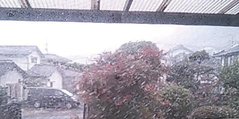 12.8雪