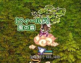 12.18風の森