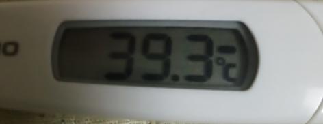 1.24体温
