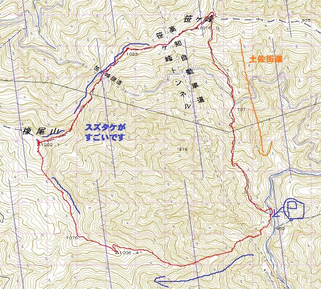 0610橡尾山から笹ヶ峰周回