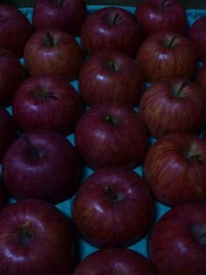 りんご2012