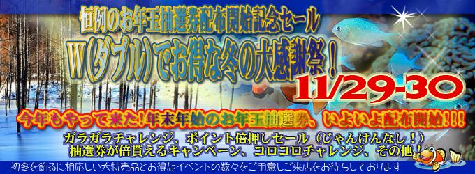 banner_2014winter.jpg