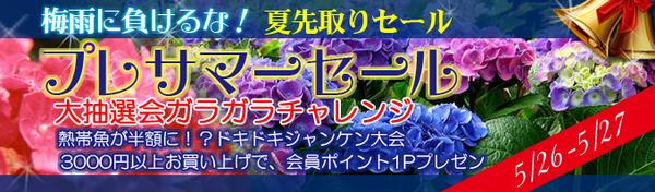 top_banner1-thumbnail2.jpg