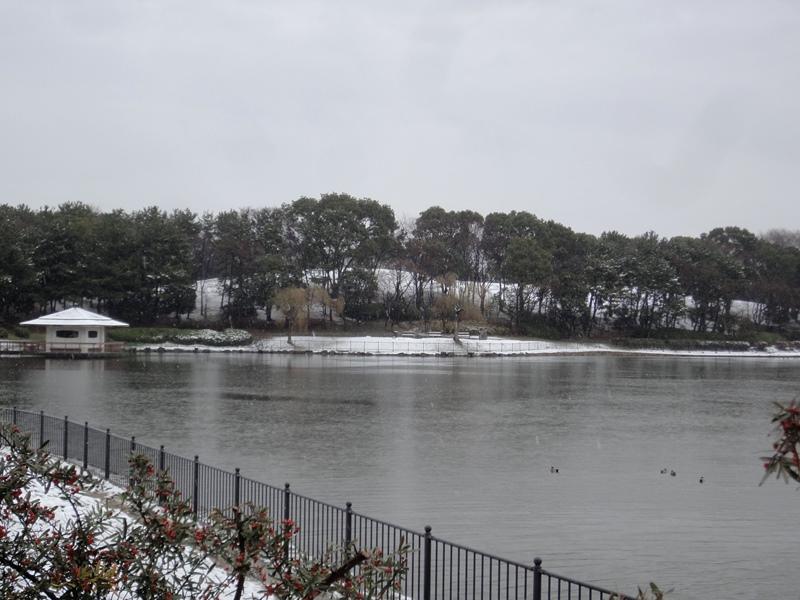 大泉雪景色1140208
