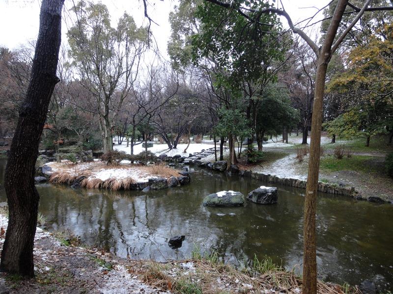 大泉雪景色2140208