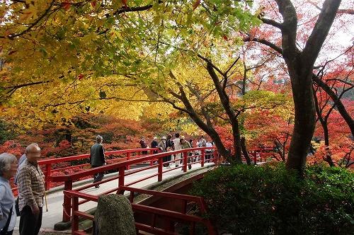 弥彦公園2