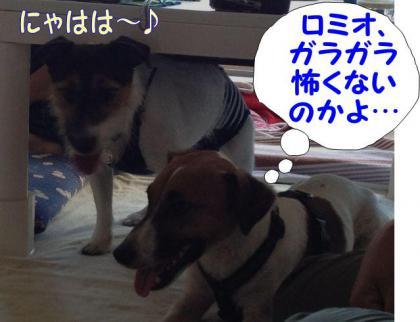 20120916015a.jpg
